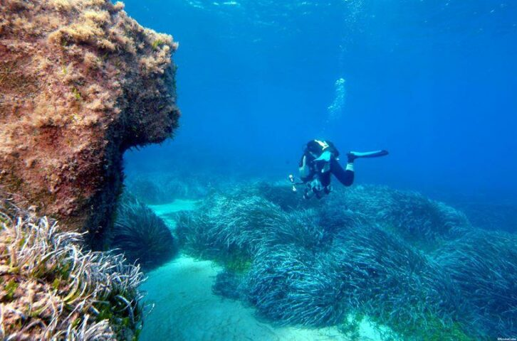 Cyclops Dive Sites Cyprus