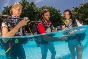 padi divers in pool training