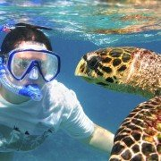 snorkeling trips with easy divers
