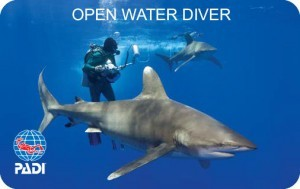 Padi Openwater Course Cyprus