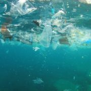 ocean pollution - plastic pollution
