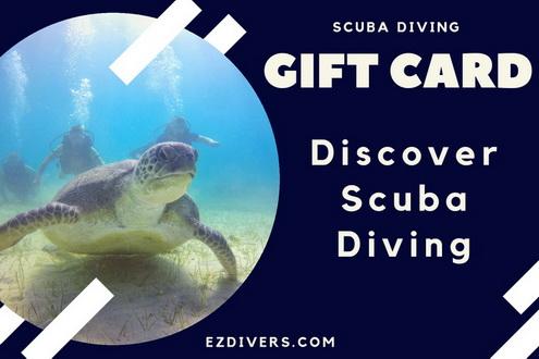 Scuba Diving Gift Card - DSD