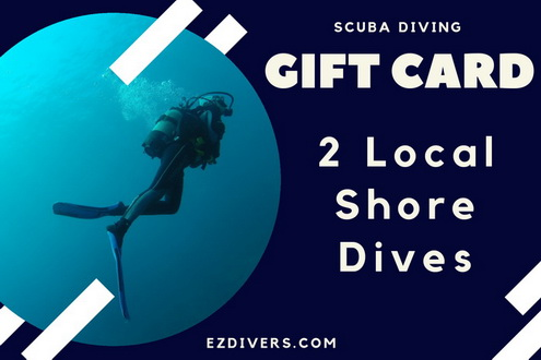 Scuba Diving Gift Card - Local Dives