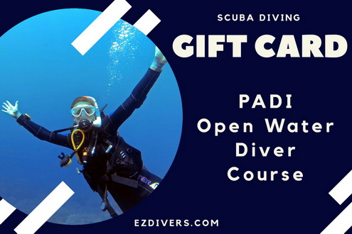 Scuba Diving Gift Card - OWD
