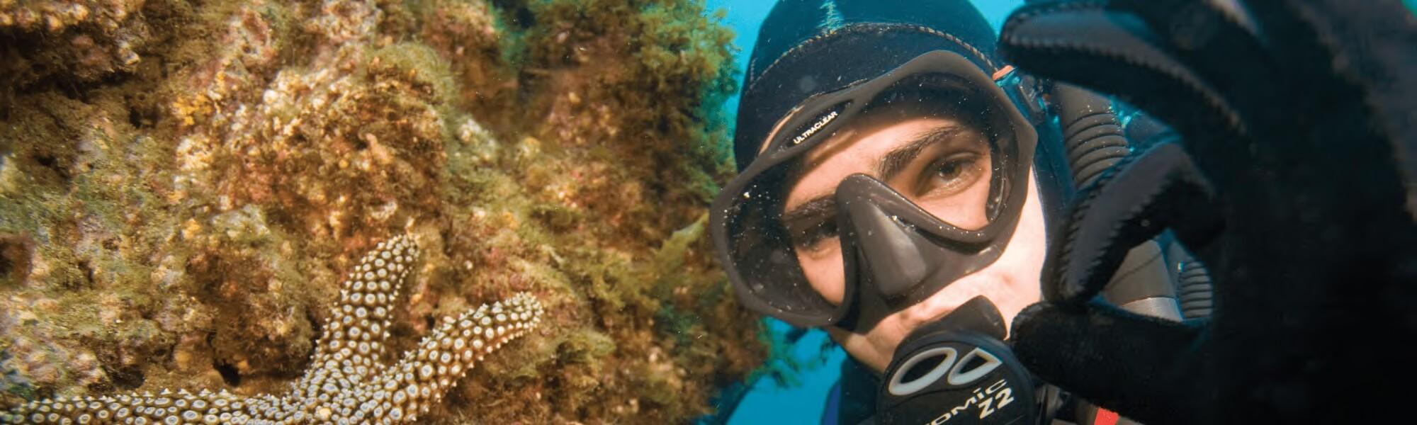 starfish easy divers cyprus