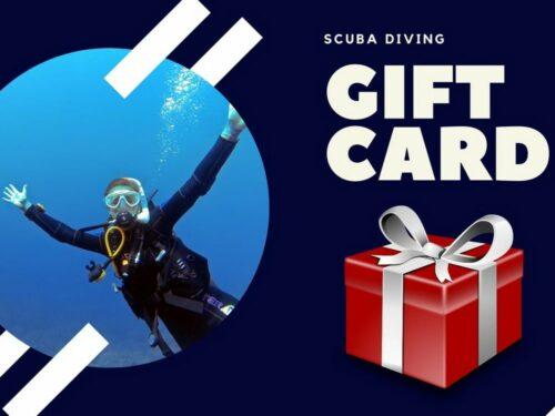 Easy Divers Cyprus Gift Card