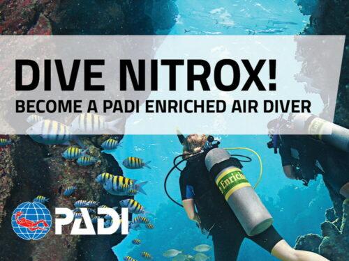 Easy Divers Cyprus PADI Nitrox