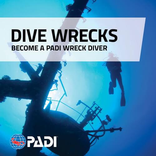 Wreck Diver - Nemesis Wreck Liberty Wreck